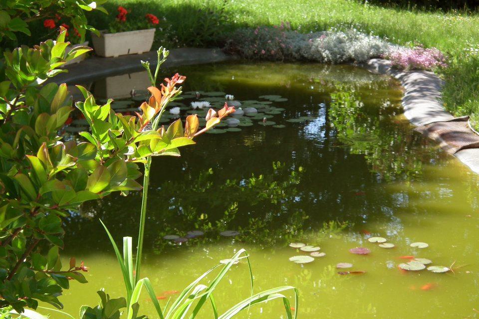 protection bâche de qualité baches bache bâches étanchéité professionnel bâches sur-mesure bache sur mesure bassin agrément agrement