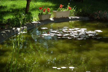 protection bâche de qualité baches bache bâches étanchéité professionnel bâches sur-mesure bache sur mesure bassin particulier
